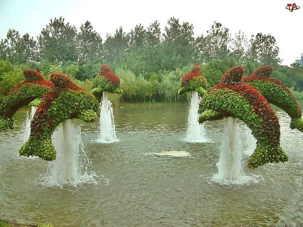 Ogród, Krzewy, Fontanny, Delfiny