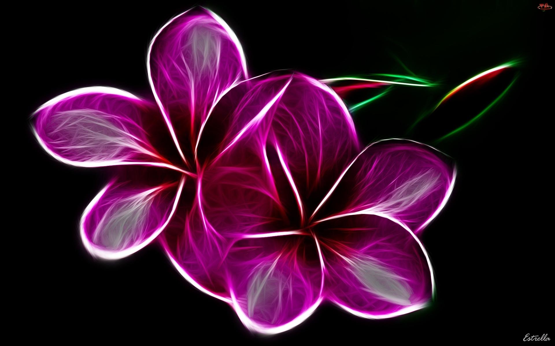 3D, Fioletowe, Kwiaty
