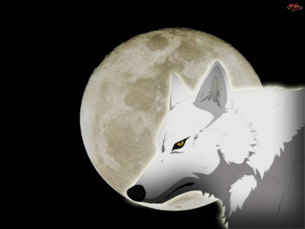 Wolfs Rain, wilk, księżyc