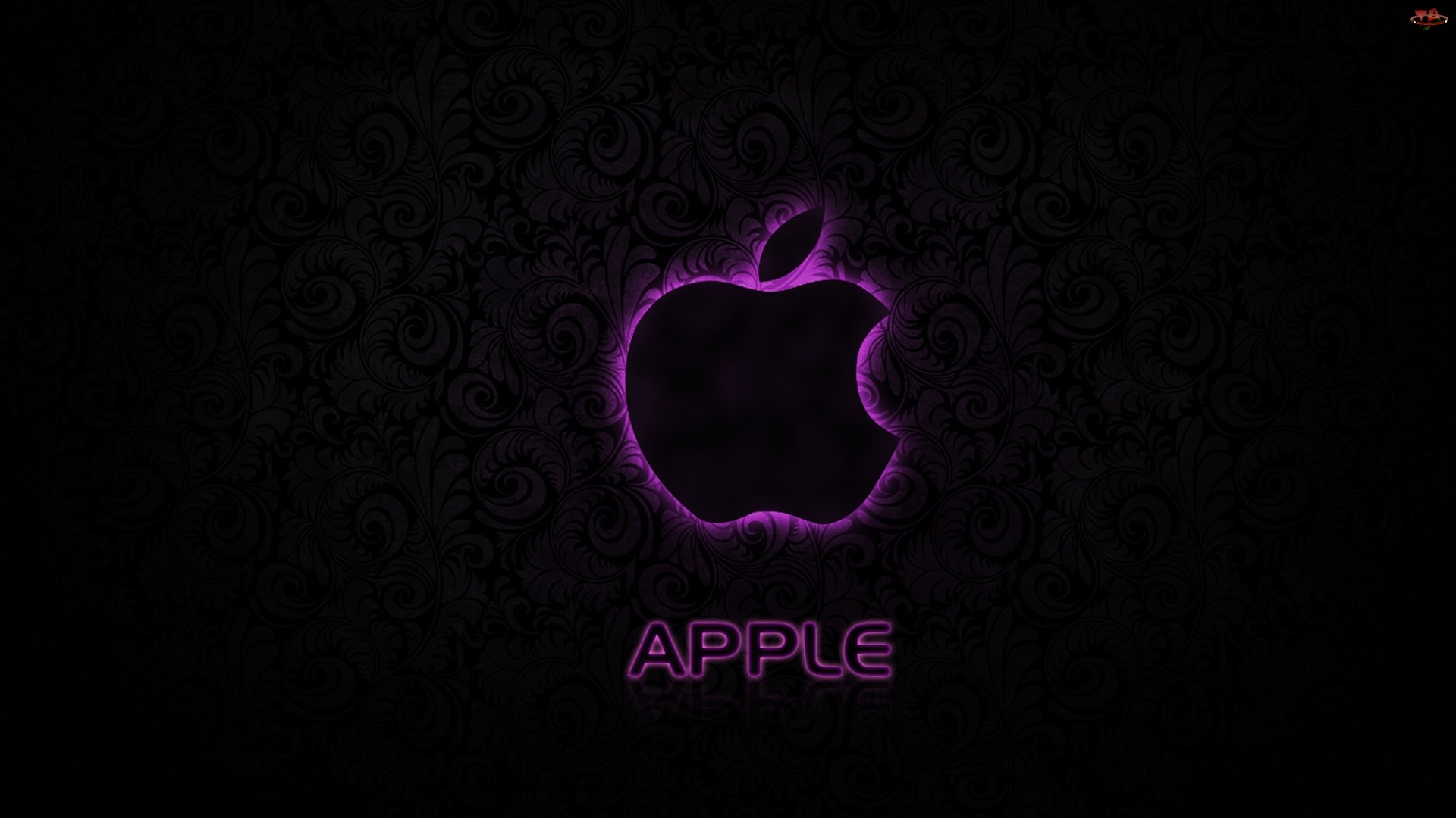 Tło, Fioletowy, Apple, Zarys, Czarne