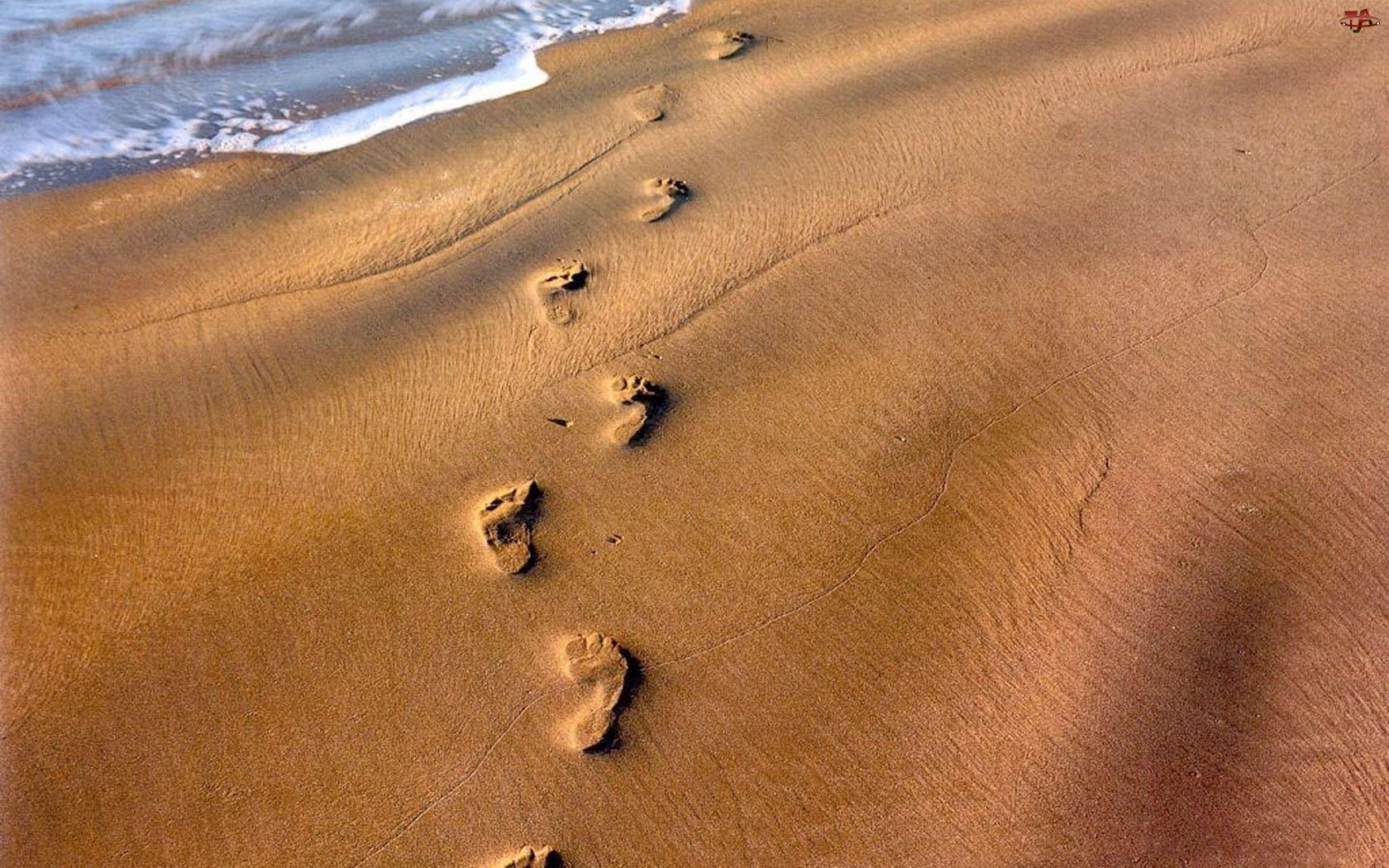 Stopy, Plaża, Piasek