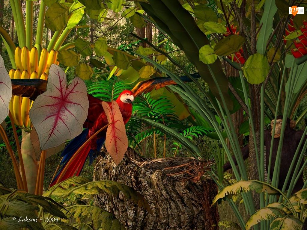 3D, Tropikalna, Dżungla