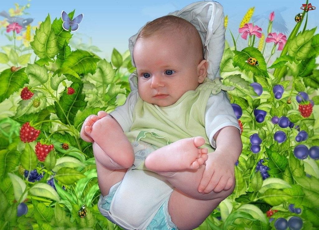 Małe, Kwiatki, Dziecko, Owoce