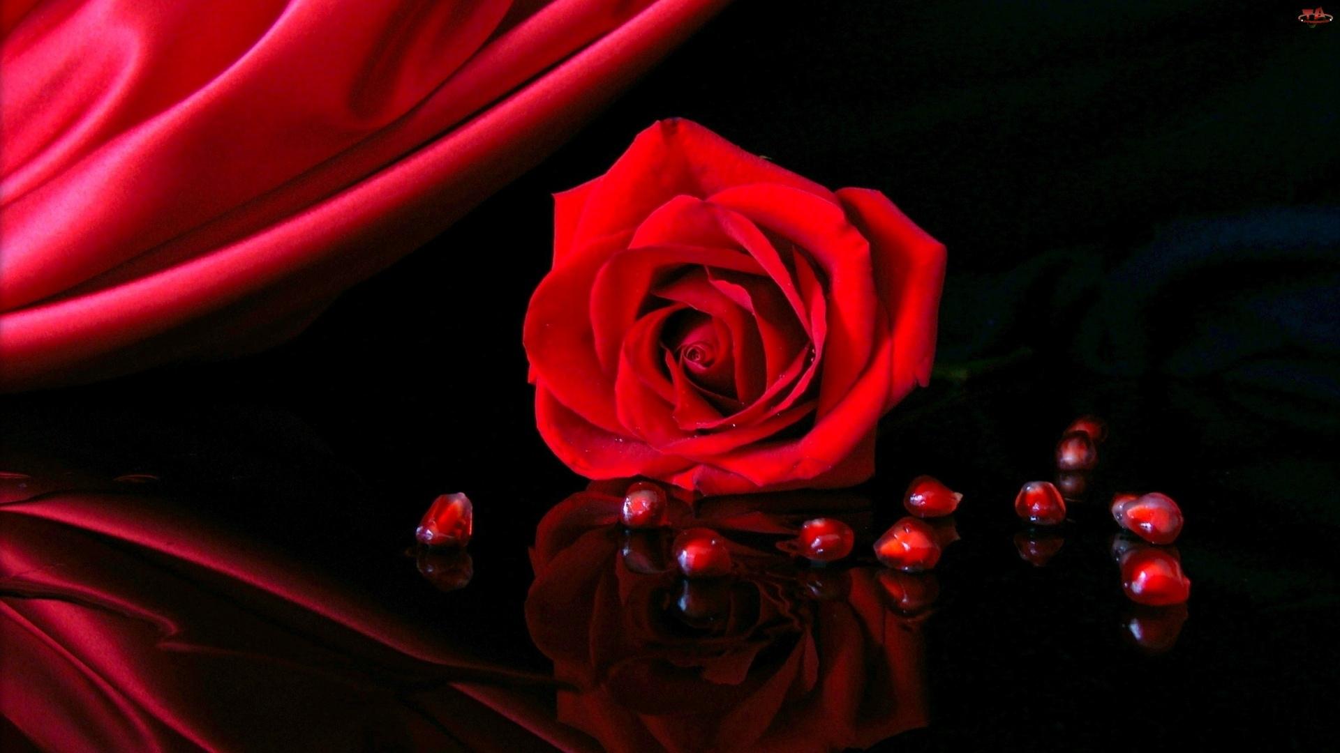 Czerwona, Granata, Róża, Pestki