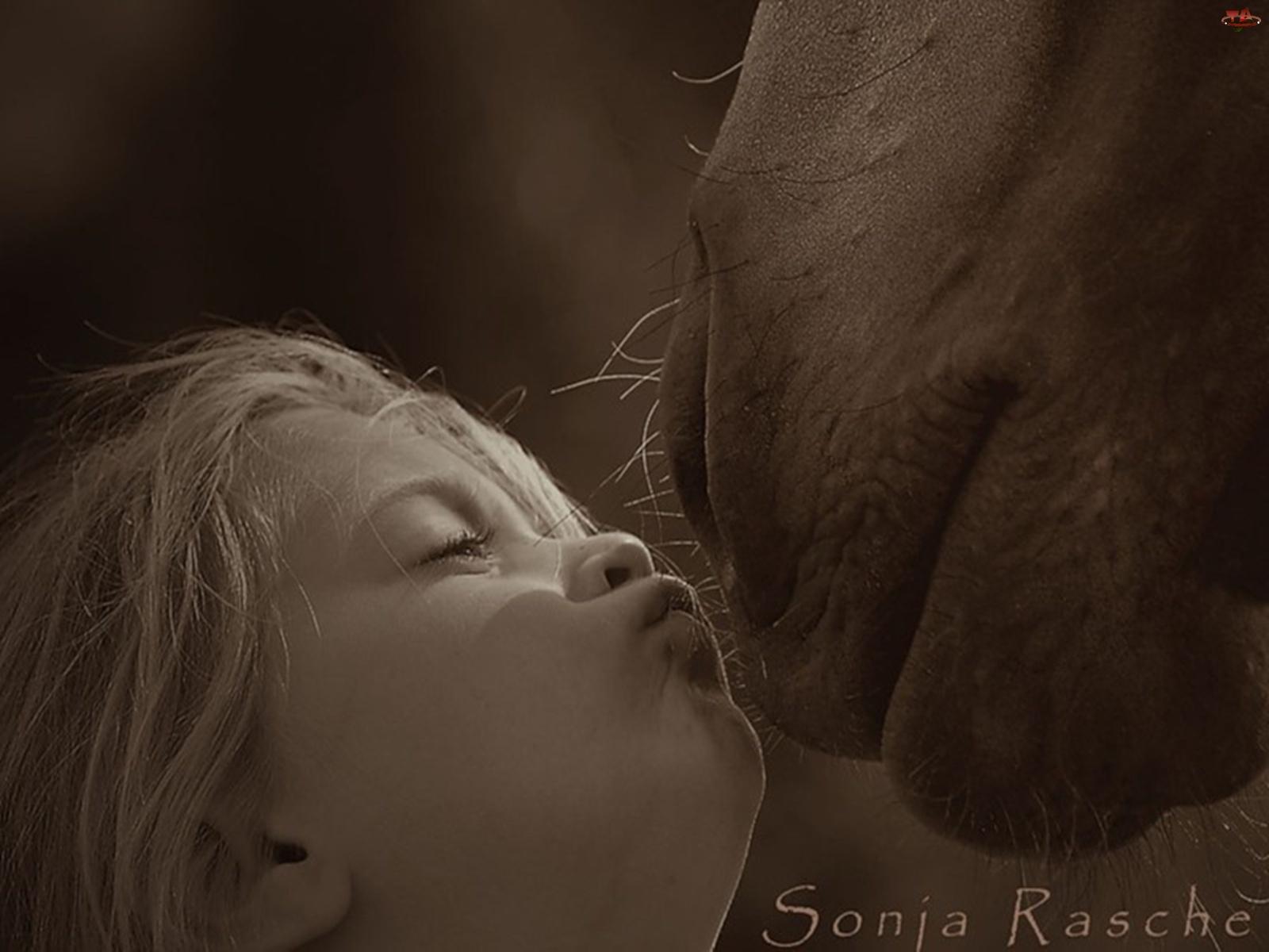 Dziewczynka, Pocałunek, Pysk, Konia