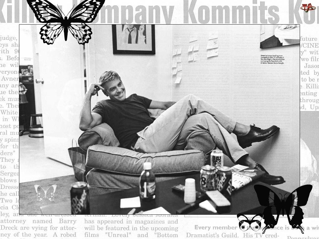 motyl, George Clooney, fotel