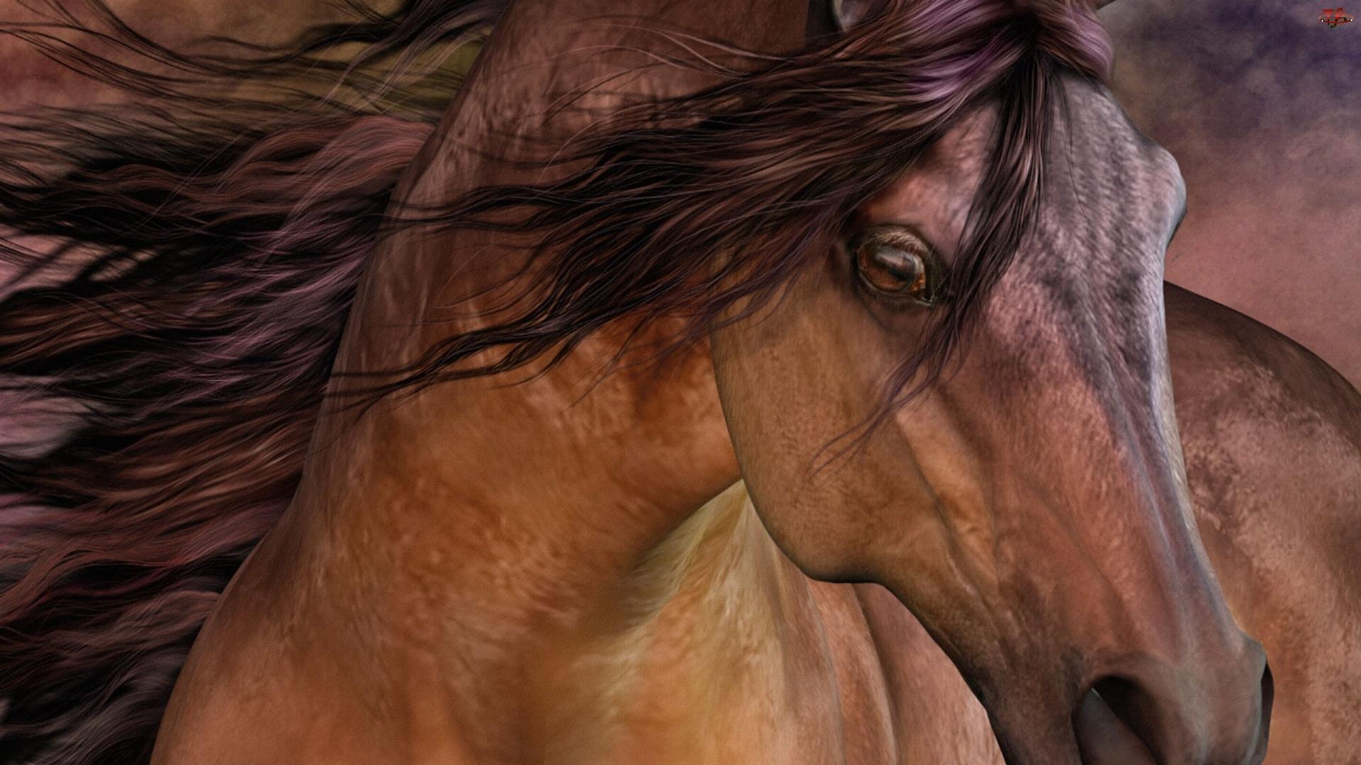 Grzywa, Koń, Rozwiana