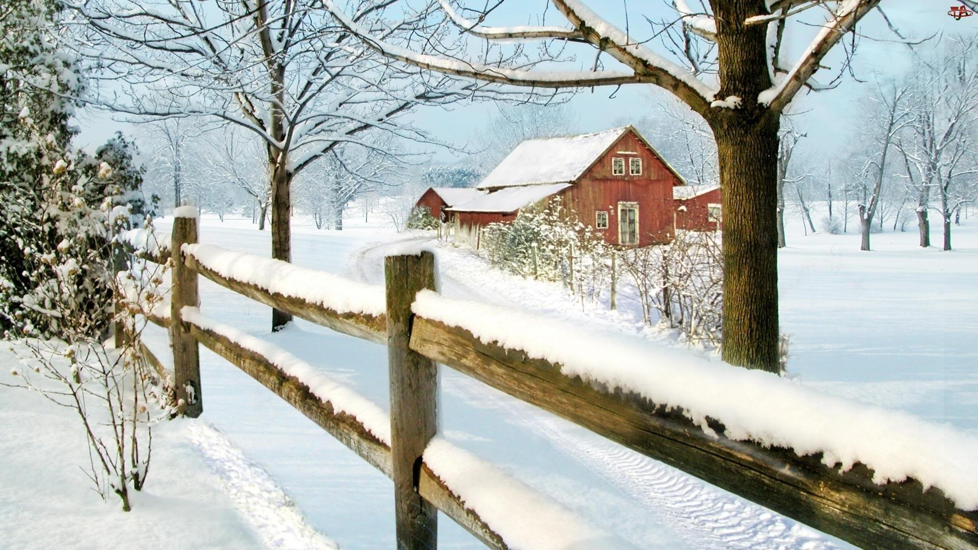 Śnieg, Dom, Zima, Drzewa, Płot, Droga