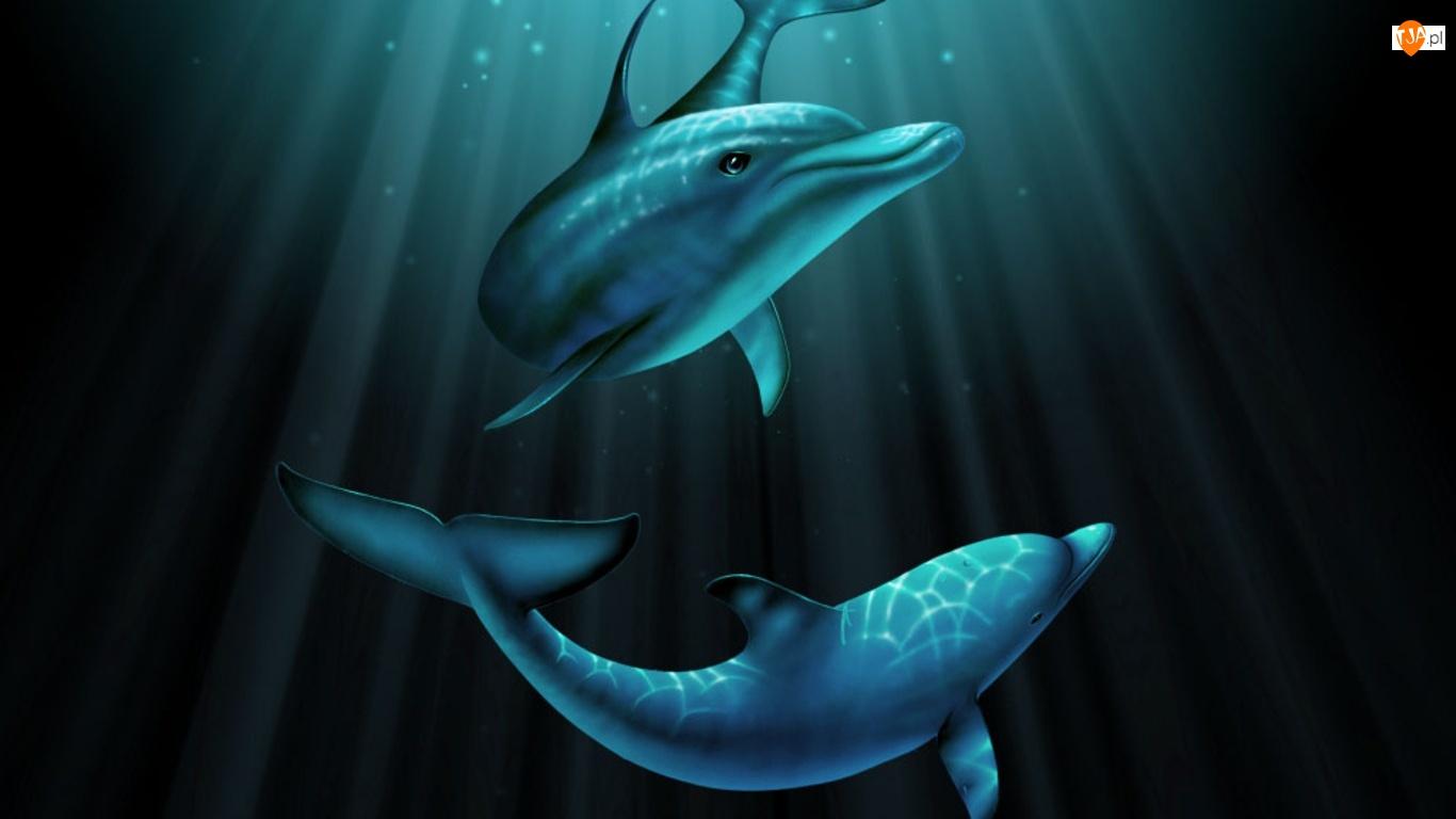 Delfiny, Woda