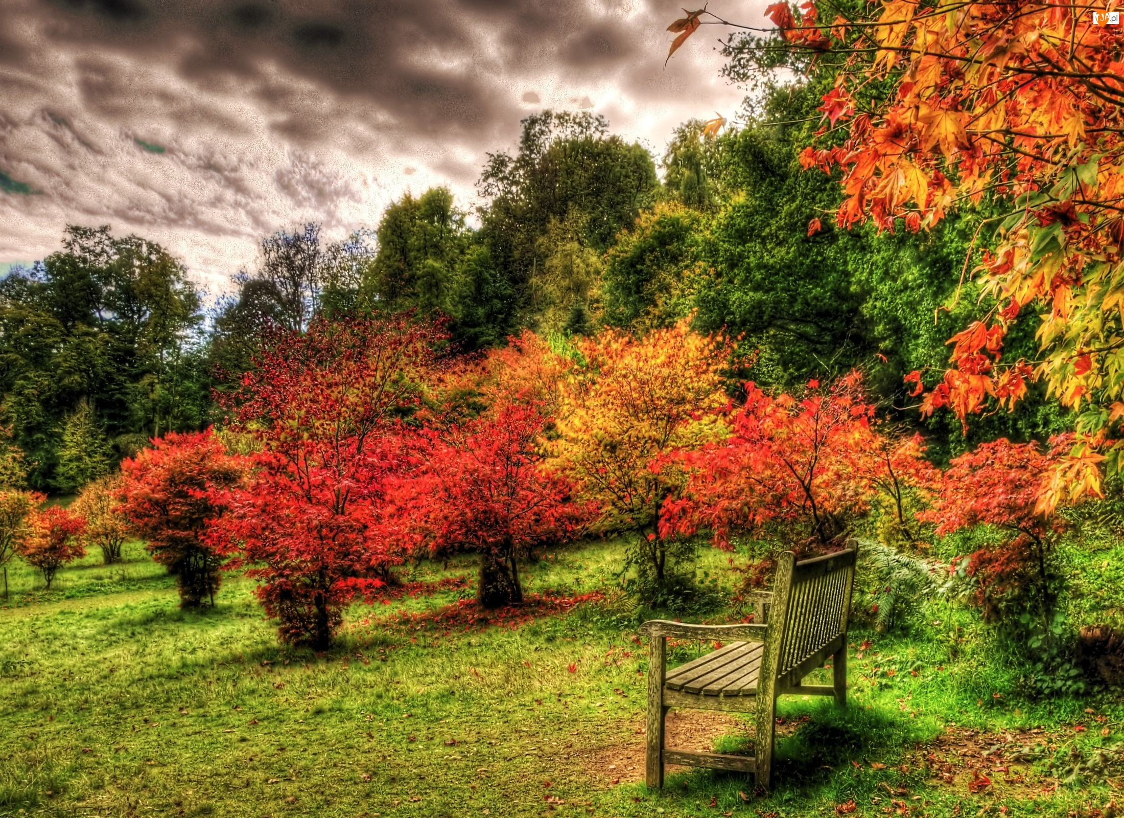 Jesień, Park
