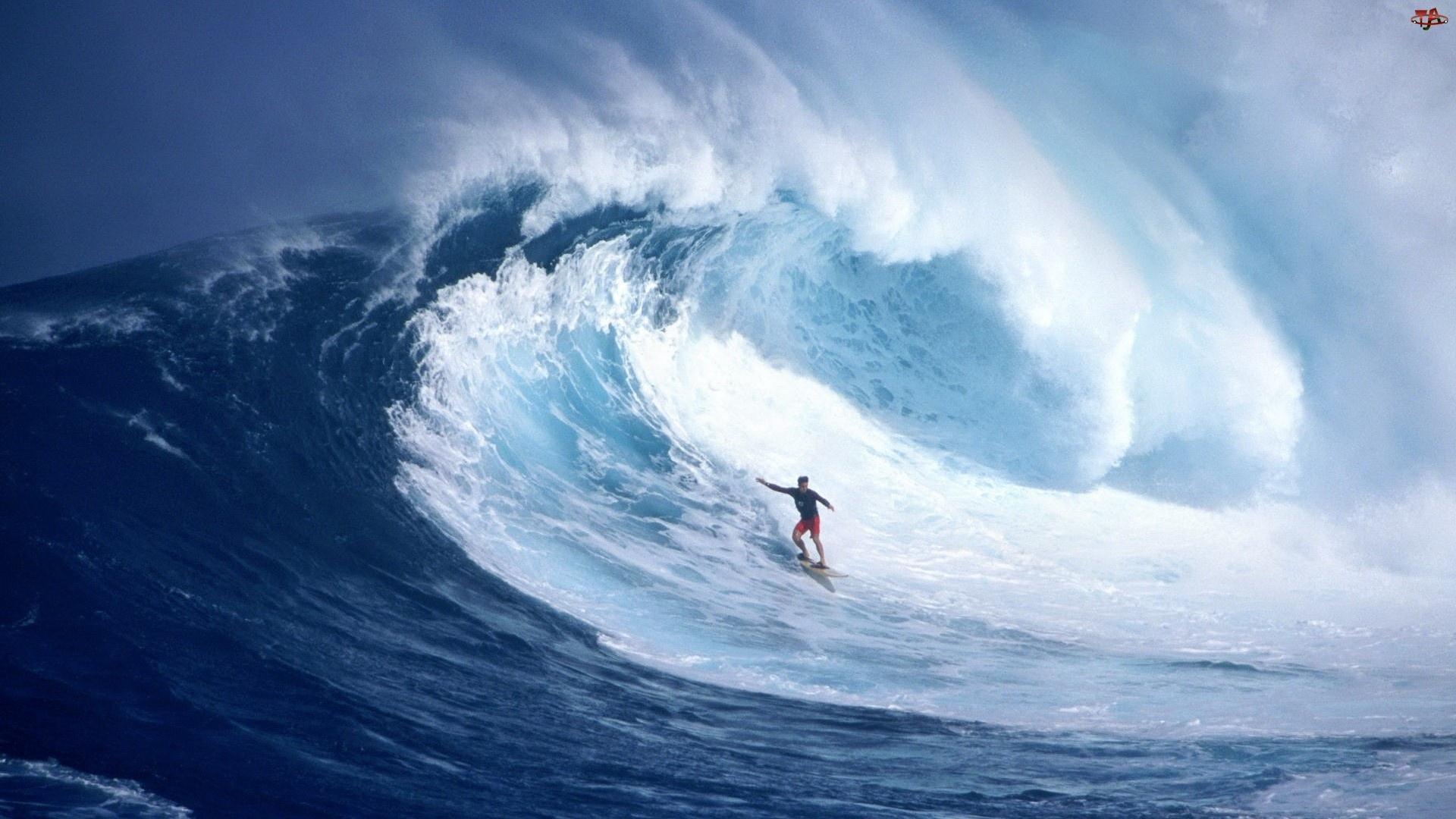 Fala, Surfing