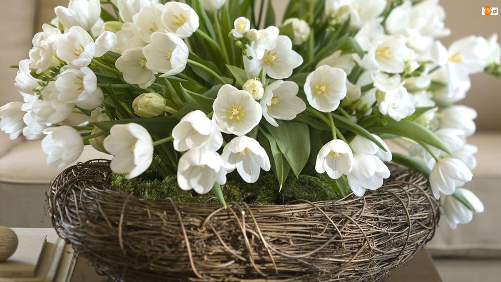 Wiklinowy, Kwiatki, Kosz, Białe