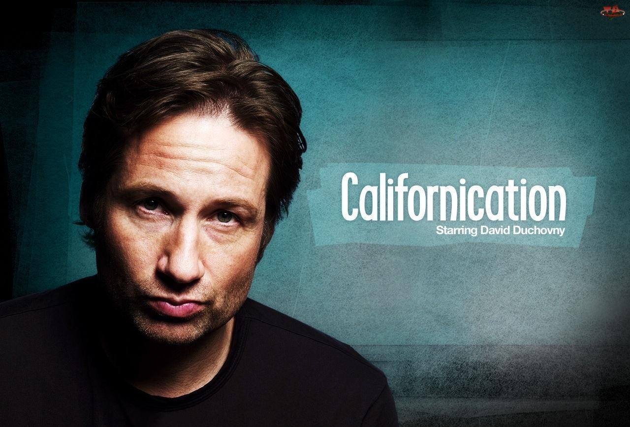 Californication, David Duchovny, Serial