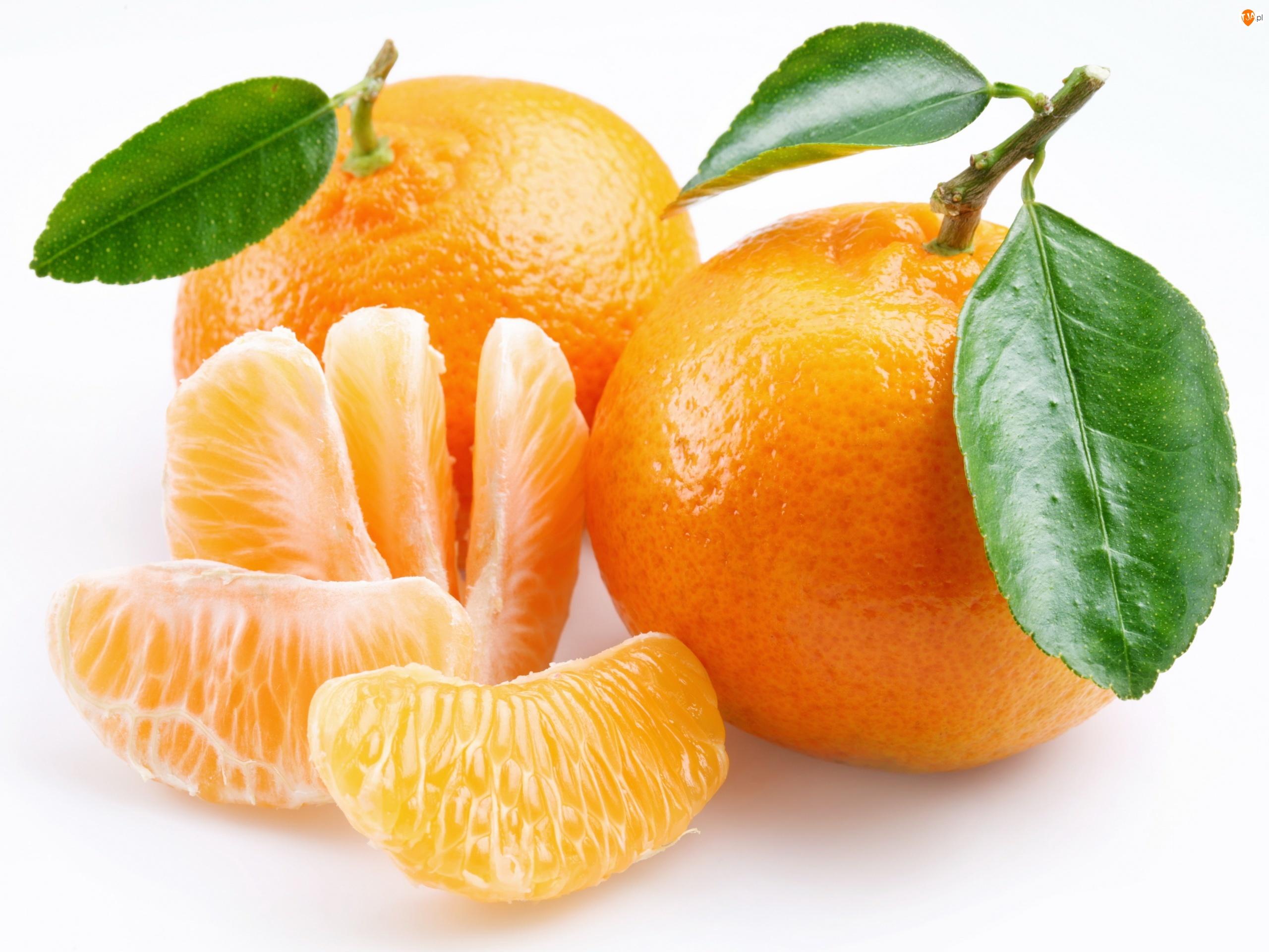 Ćwiartki, Owoce, Pomarańcze