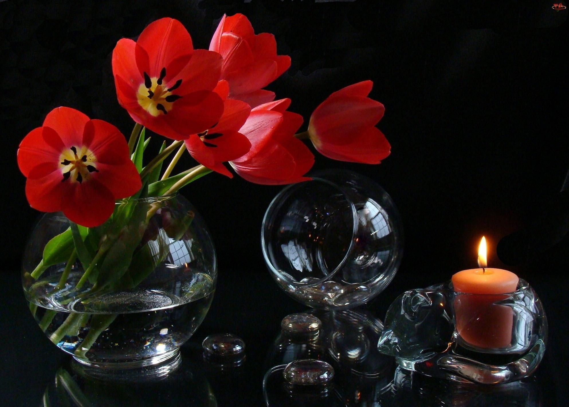 Tulipany, Kula, Dekoracja, Świeca, Czerwone, Szklana