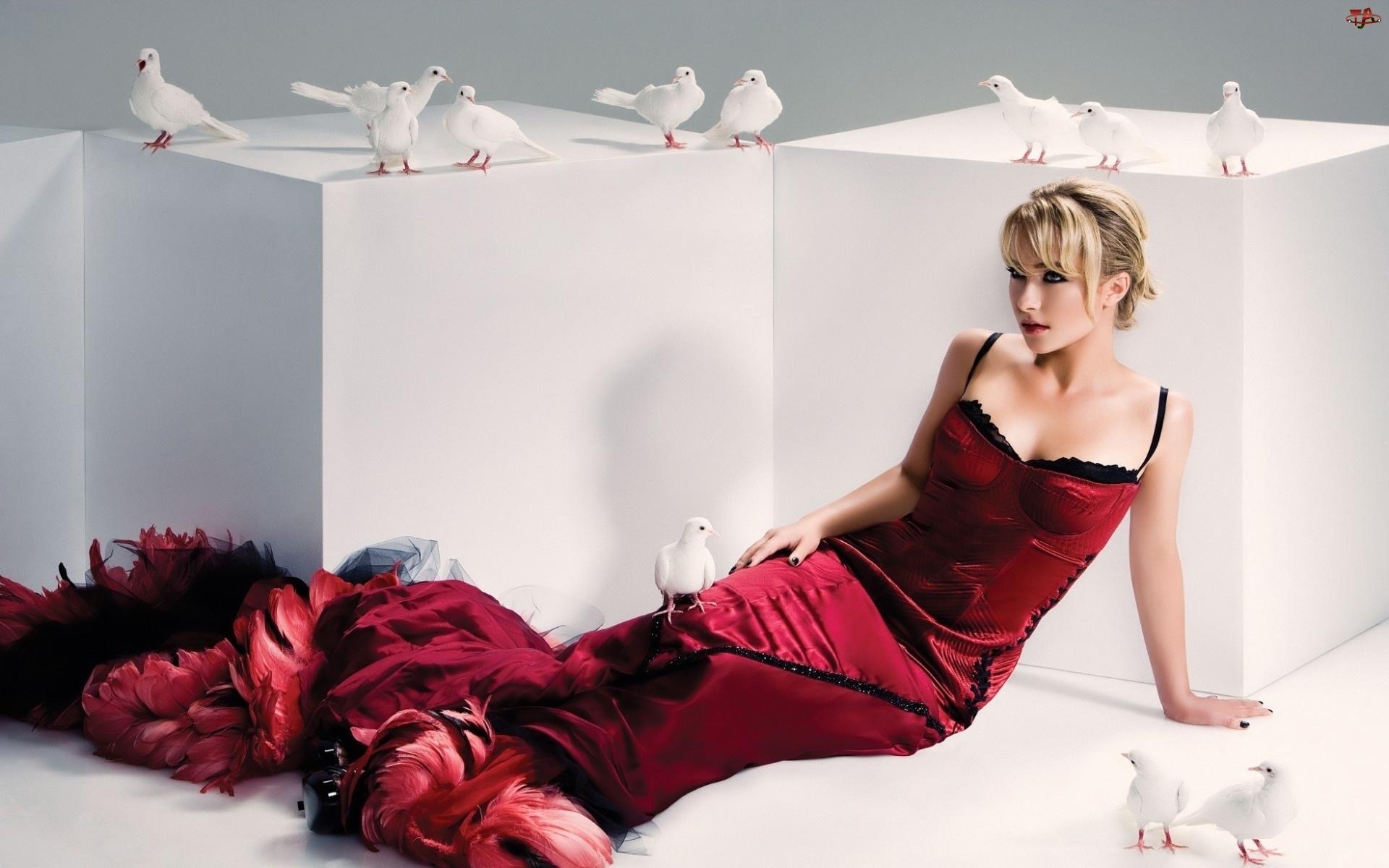 Aktorka, Hayden Penettiere, Gołębie