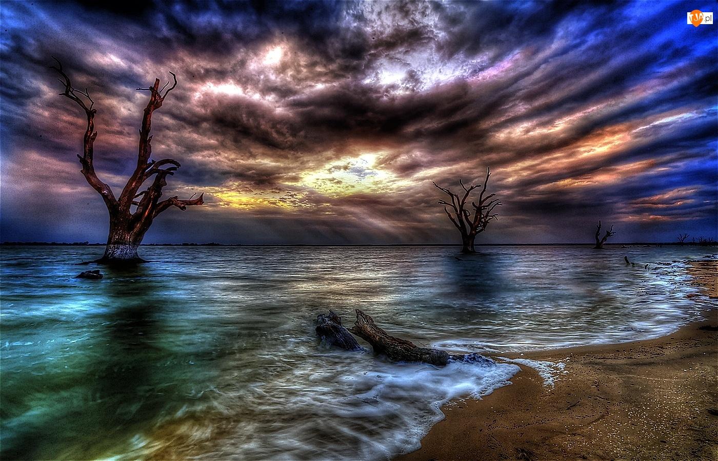 Konary, Zachód, Morze, Chmury, Drzew, Plaża, Słońca