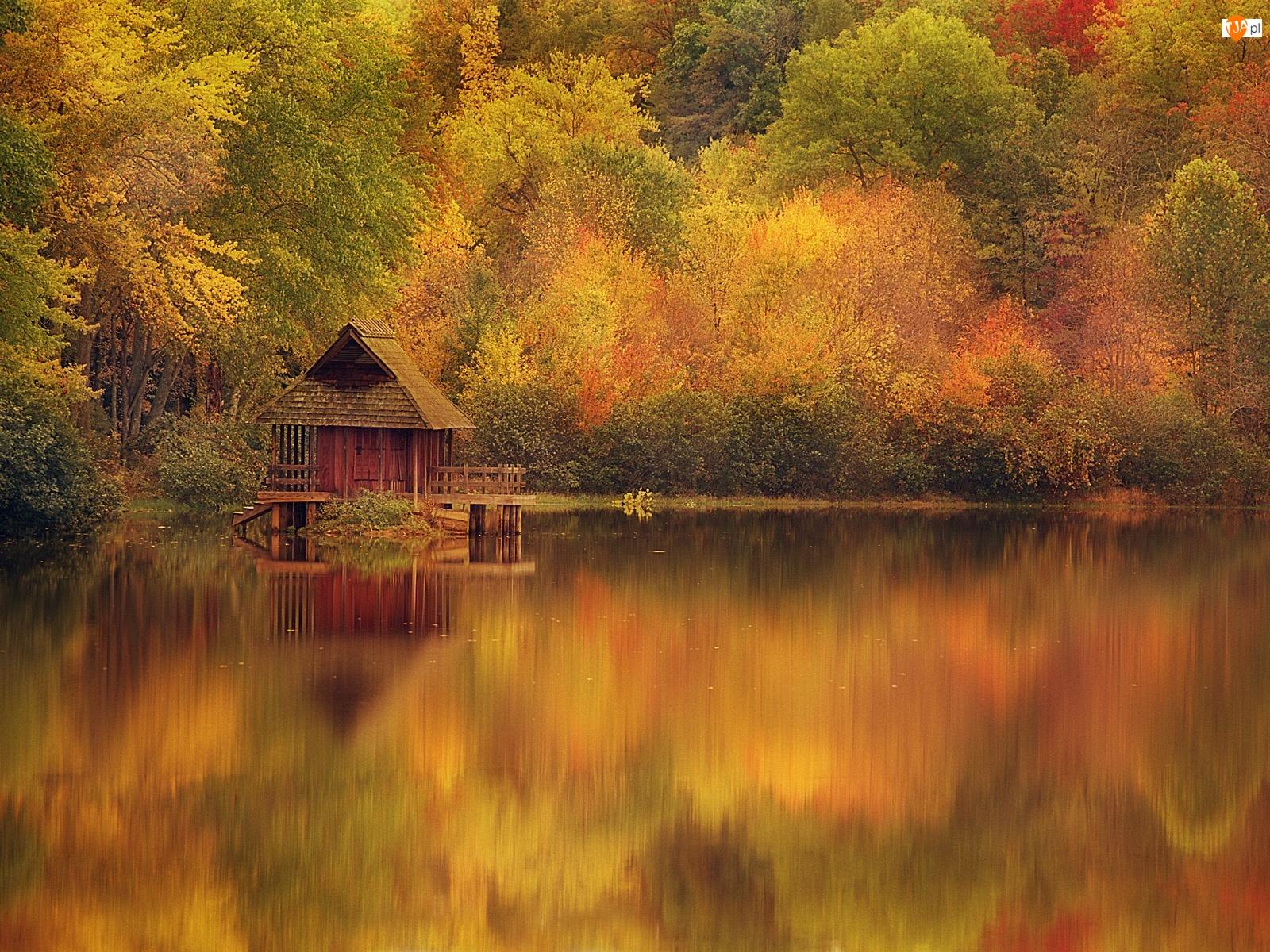 Jesień, Jezioro, Domek, Drzewa, Odbicie