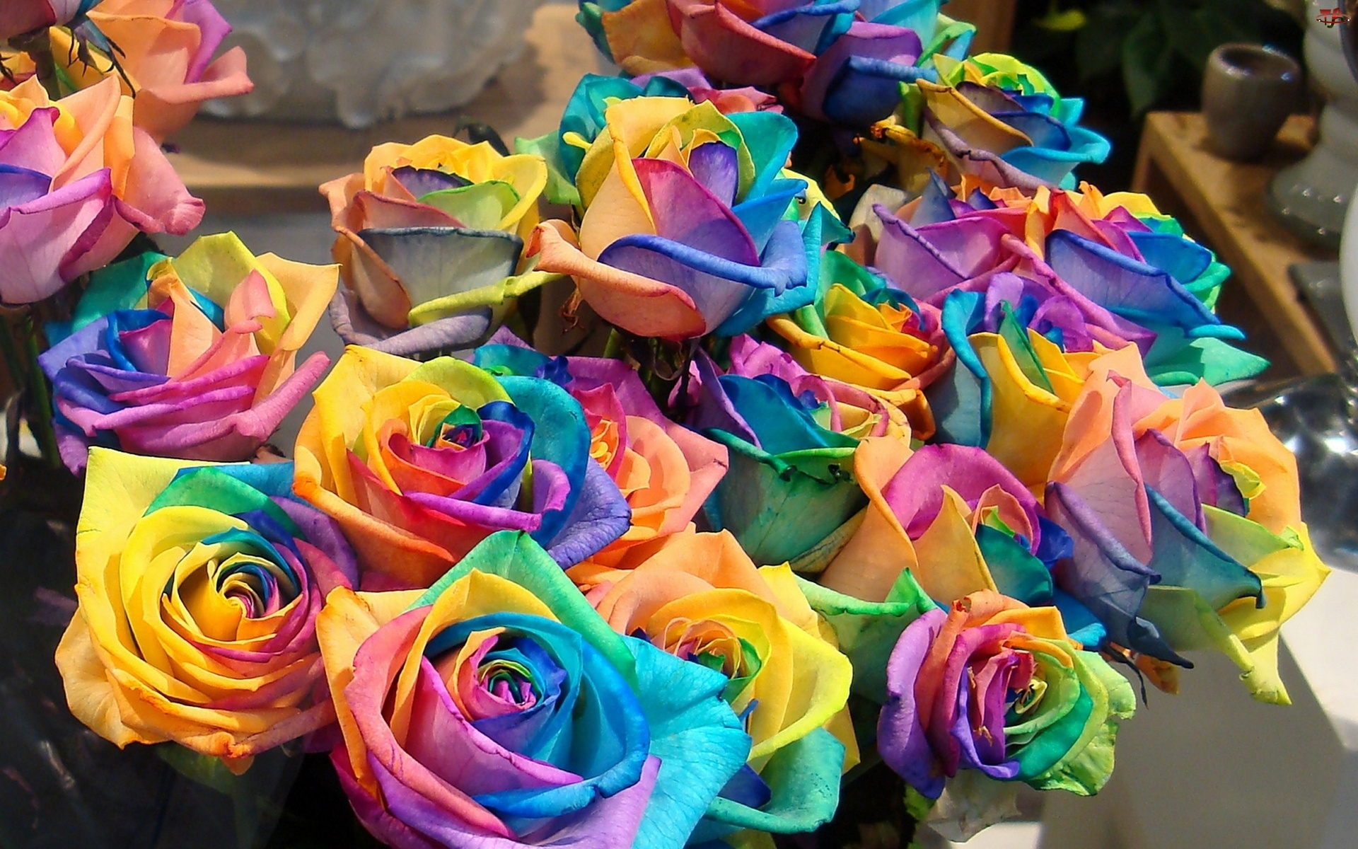 Kolorowe, Róże
