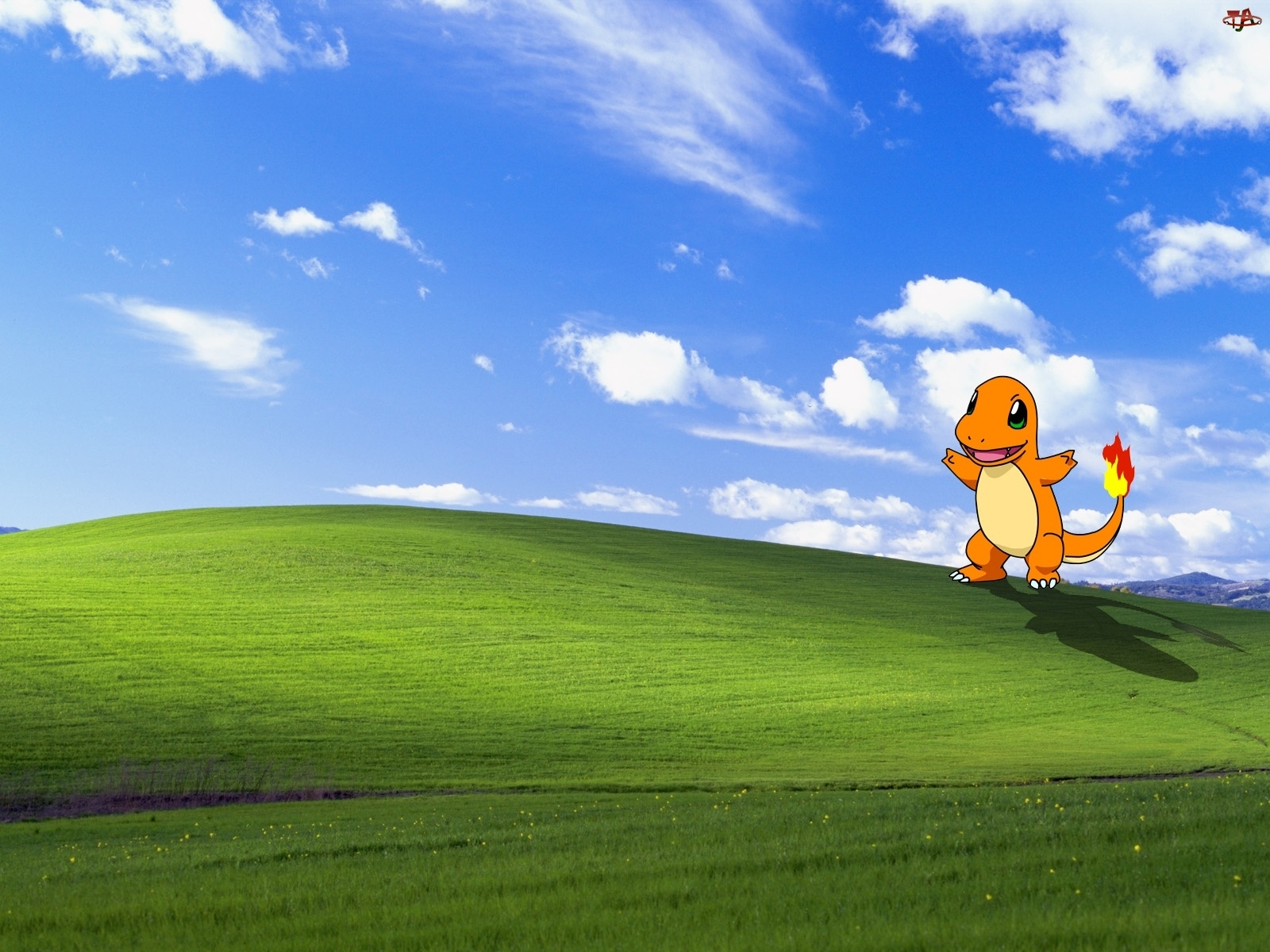 Pokemon, Windows, XP