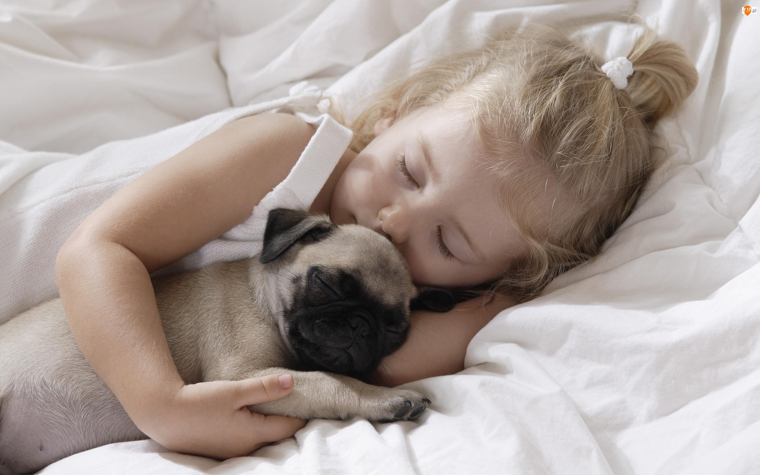 Buldożek Francuski, Śpiące, Dziecko