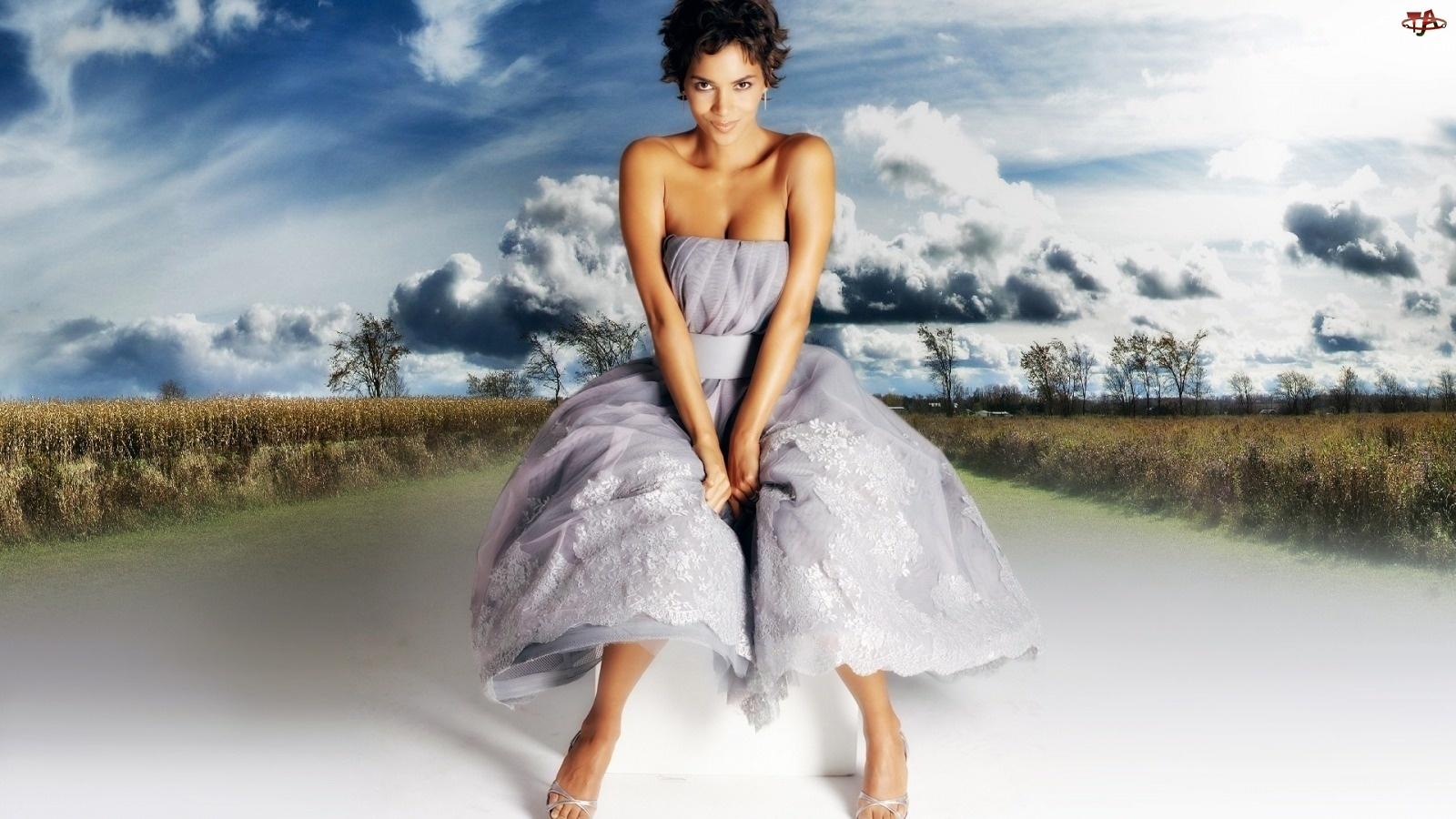 Halle Berry, Aktorka