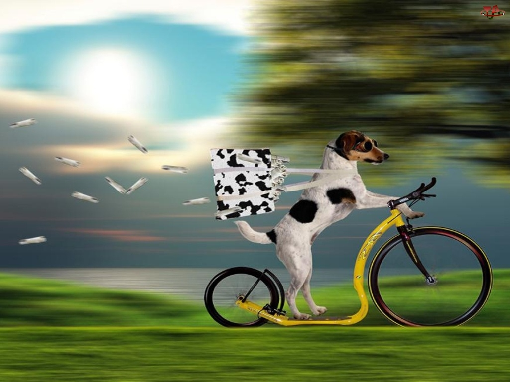 Pies, Listonosz
