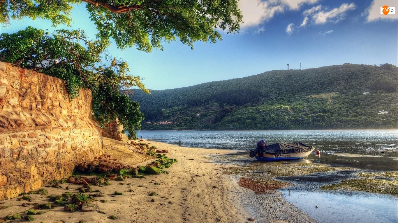 Łódka, Piasek, Rzeka, Drzewa, Woda, Plaża