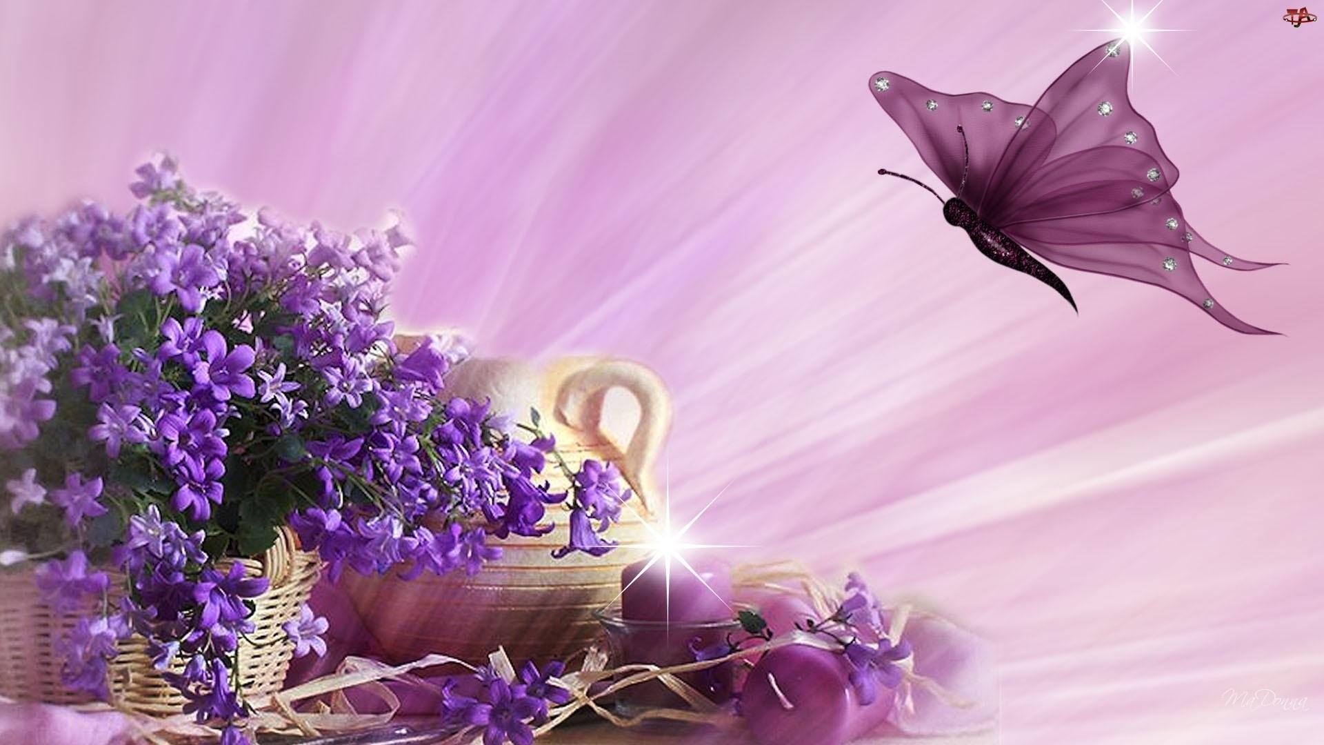 Motyl, Kwiaty, Koszyk