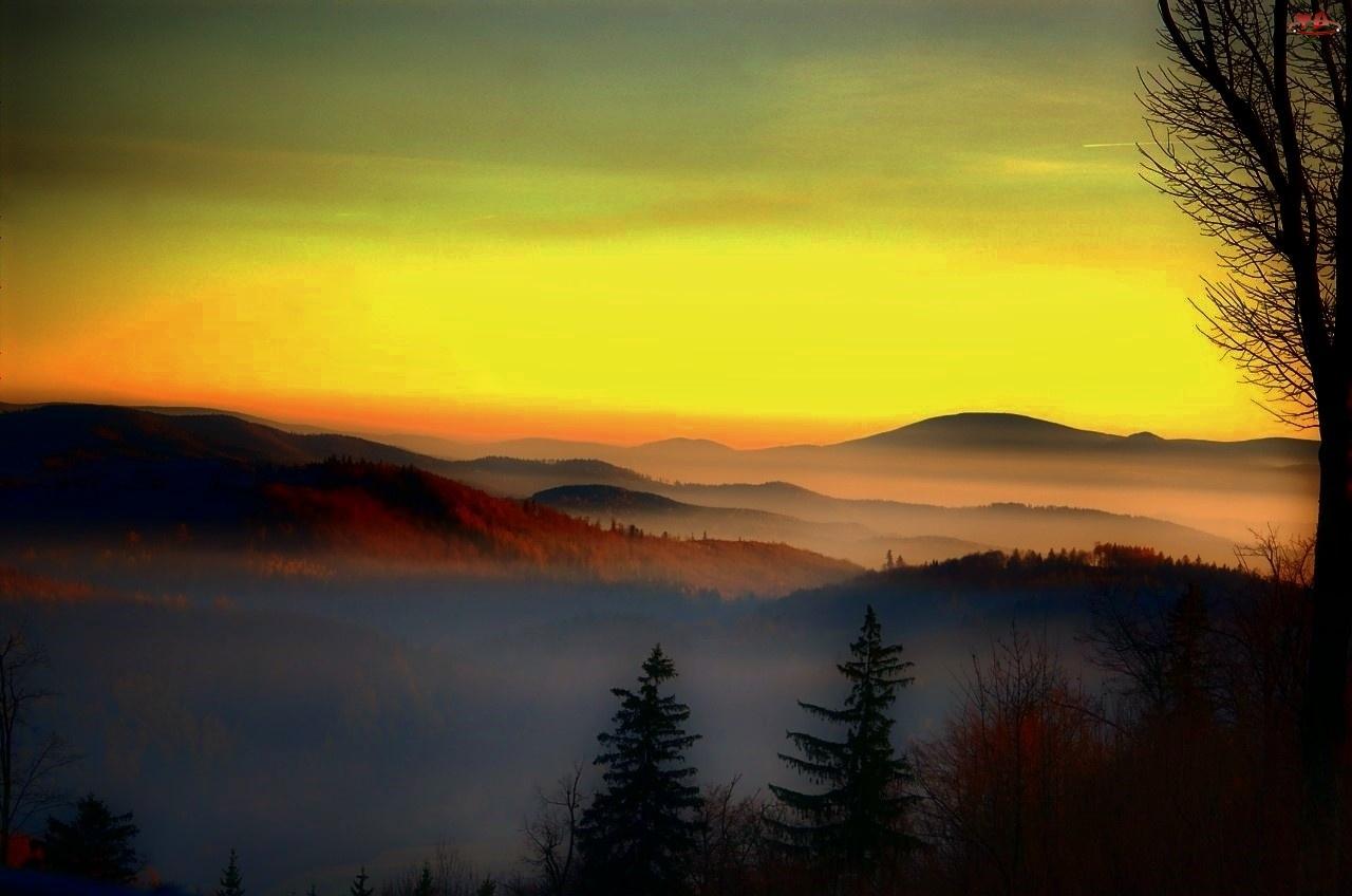 Niebo, Góry, Szczyty, Mgła, Las