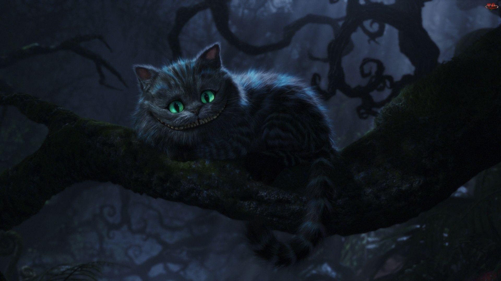 Kot, Alicja W Krainie Czarów, Cheshire