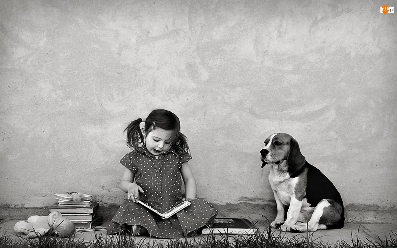 Dziewczynka, Beagle, Książki, Pies