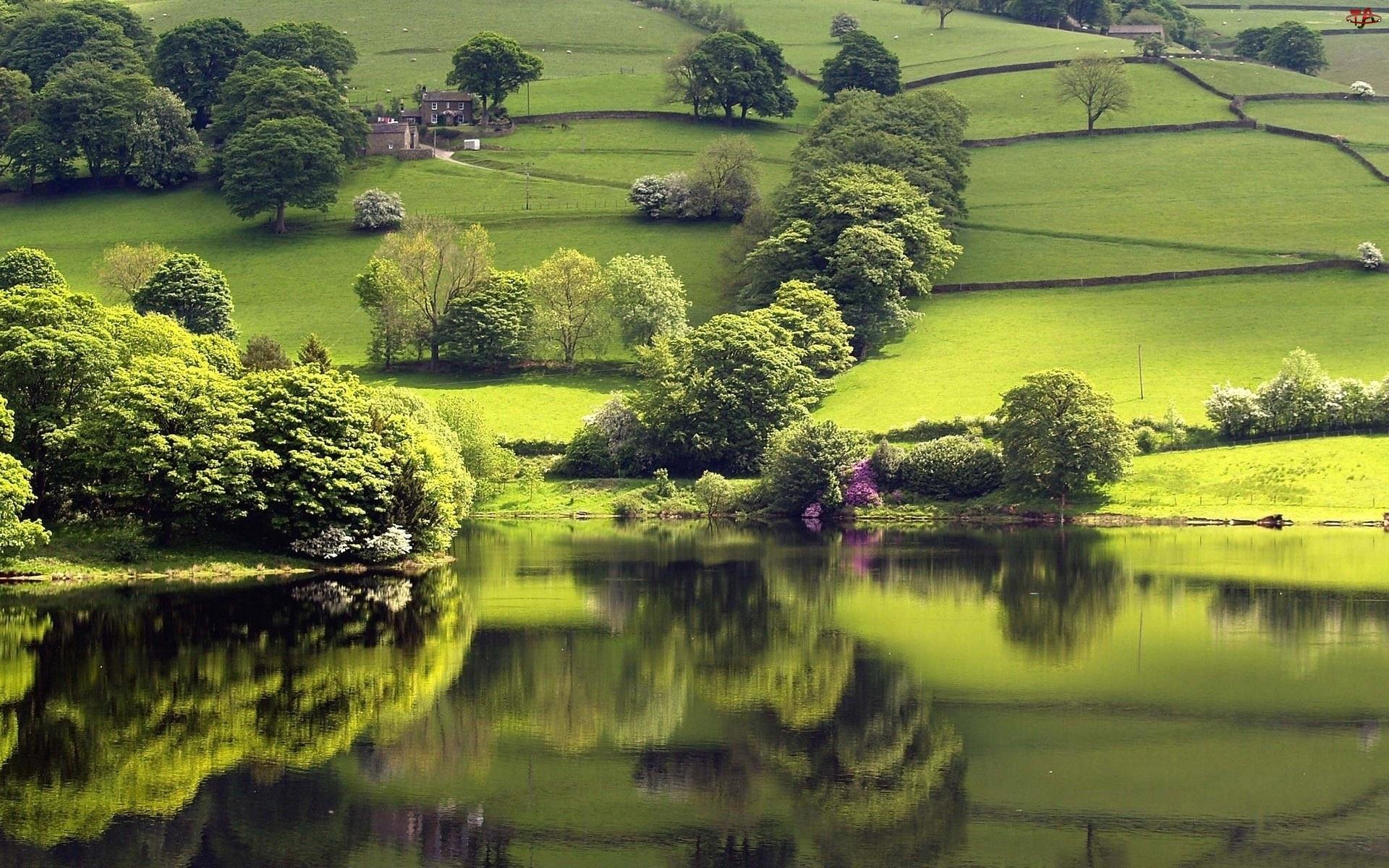 Wzgórza, Jezioro, Zielone