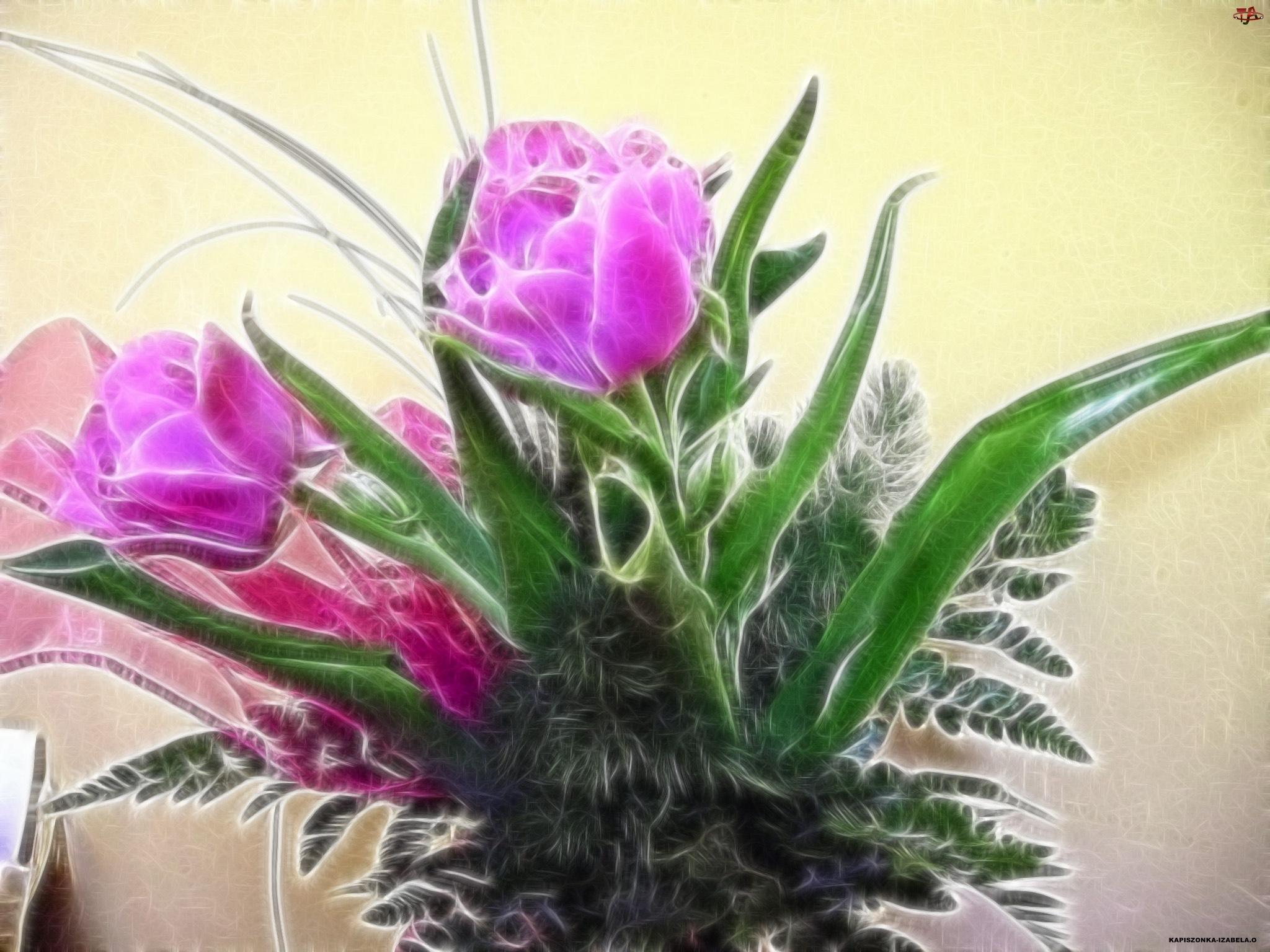 Fractalius, Tulipany, Kompozycja