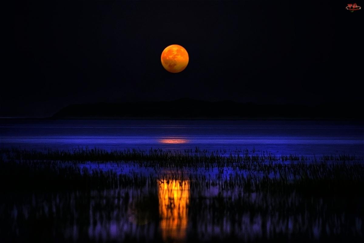 Księżyc, Noc, Jezioro
