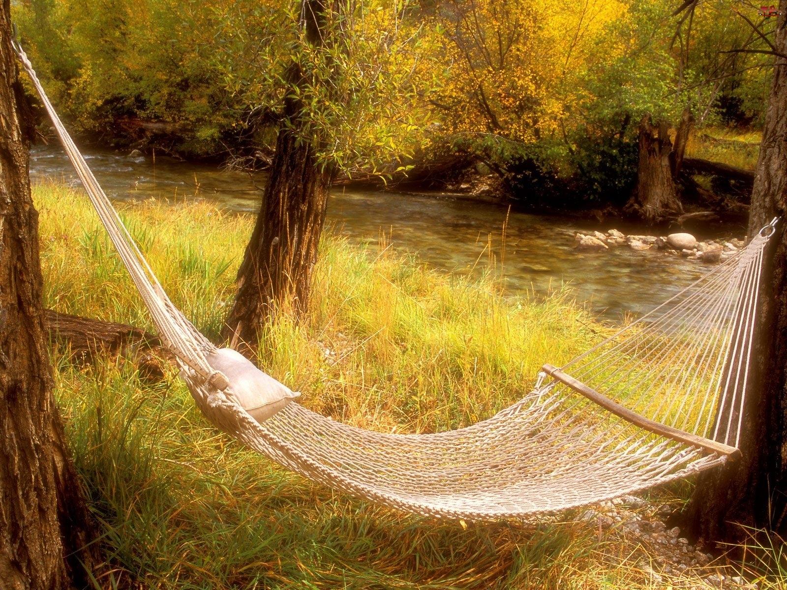Hamak, Rzeka, Drzewa