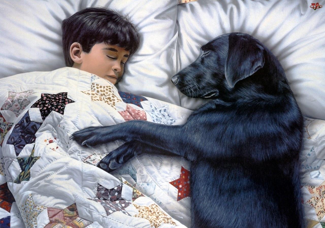 Podusie, Śpiące, Pies, Dziecko, Kołderka