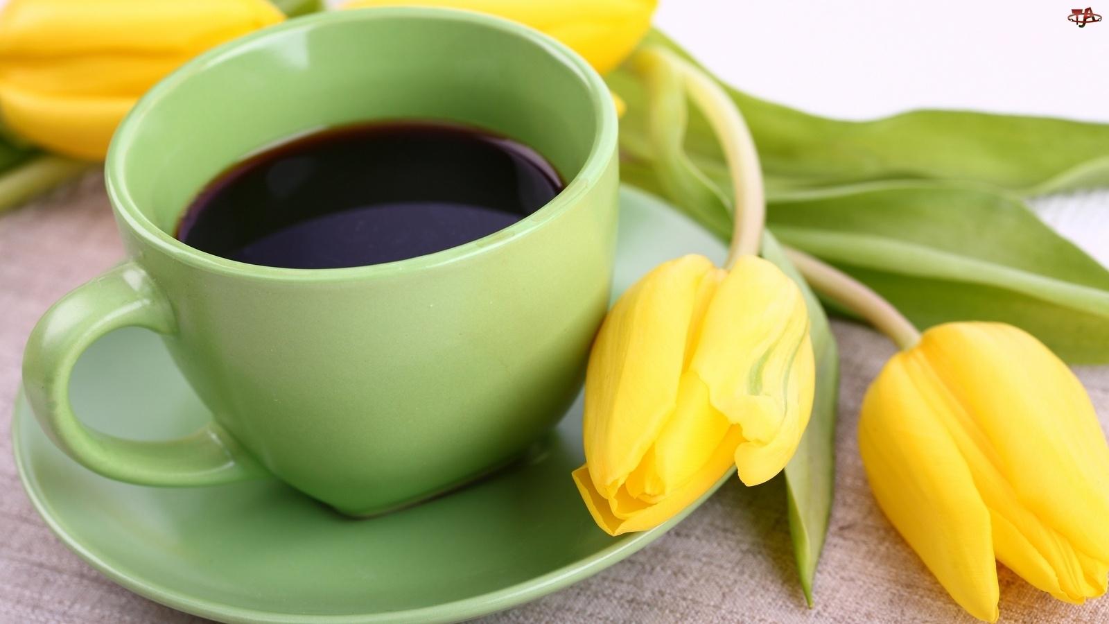 Tulipany, Zielona, Kawa, Filiżanka, Żółte