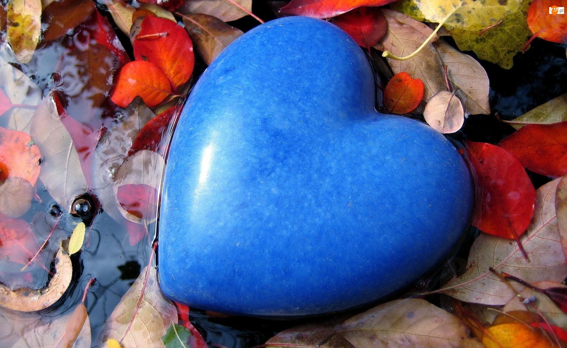 Serce, Liście, Niebieskie