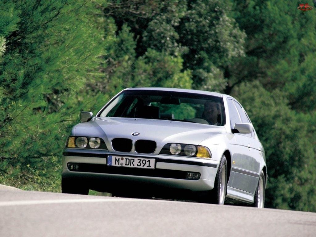E39, Srebrne, BMW 5