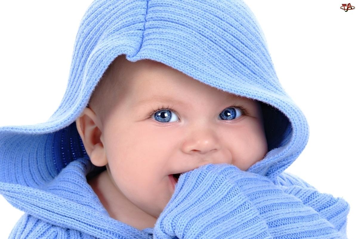 Kaptur, Dziecko, Oczy, Niebieskie, Sweterek