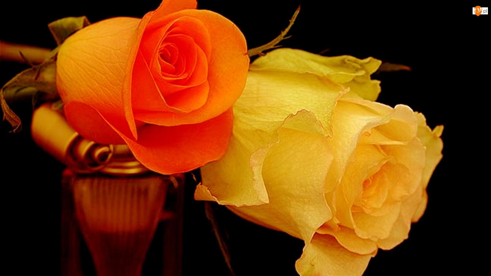 Открытка любимой женщине с цветами, добрым утром
