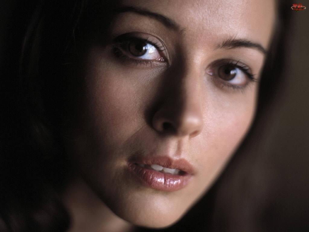 Portret, Amy Acker, Aktorka