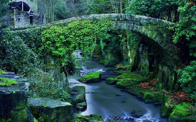 Most, Rzeka, Kamienny