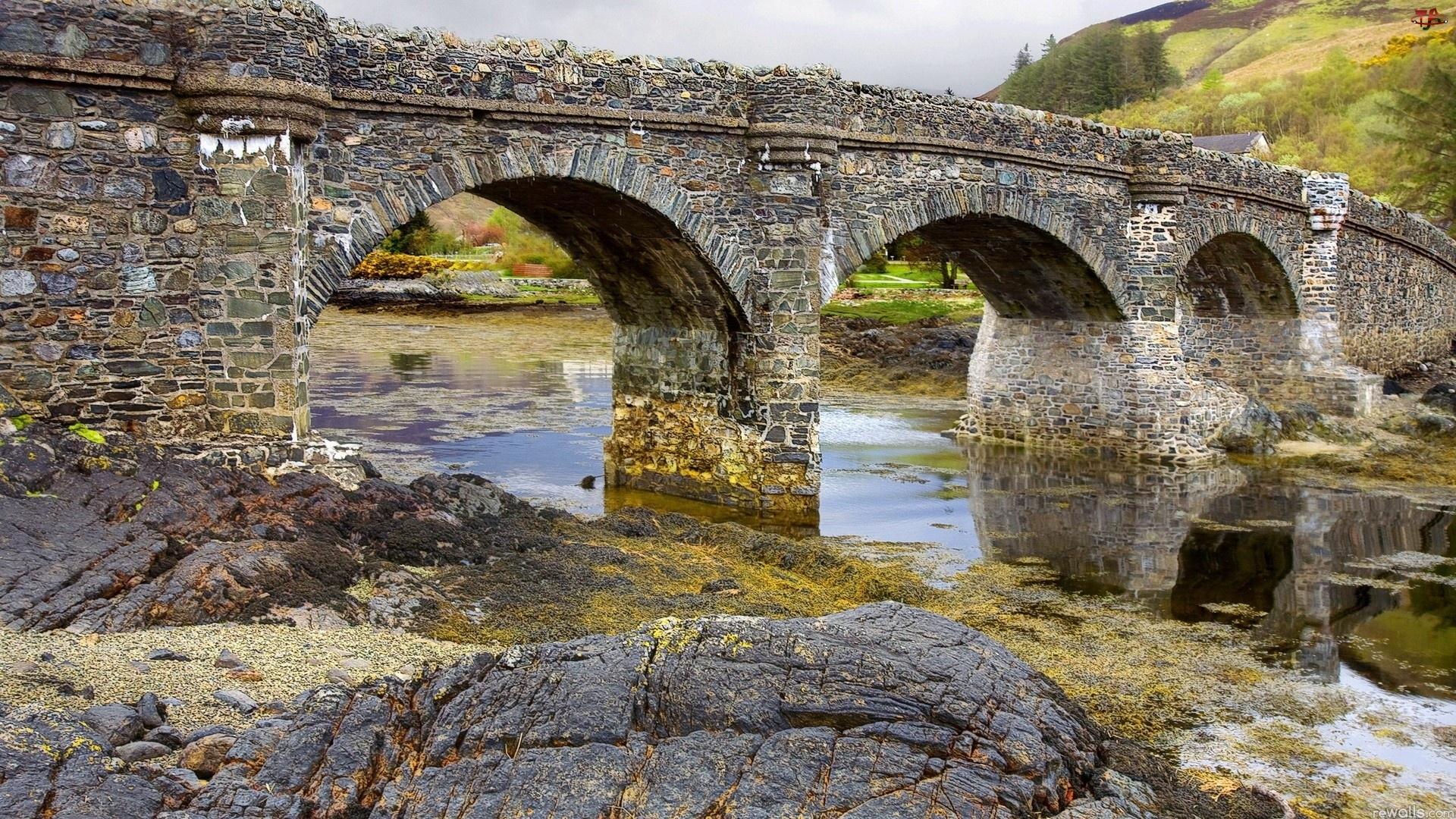 Rzeka, Most
