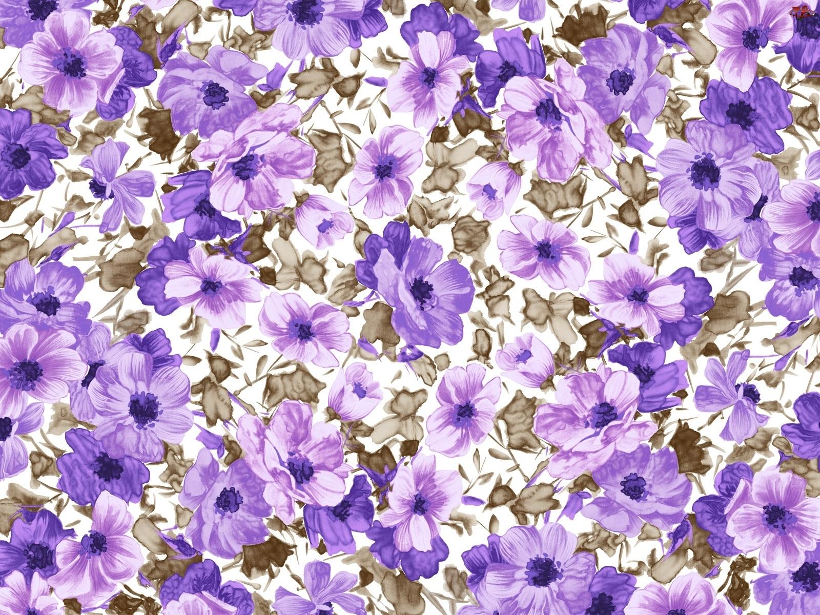 Tekstura, Fioletowe, Kwiatki