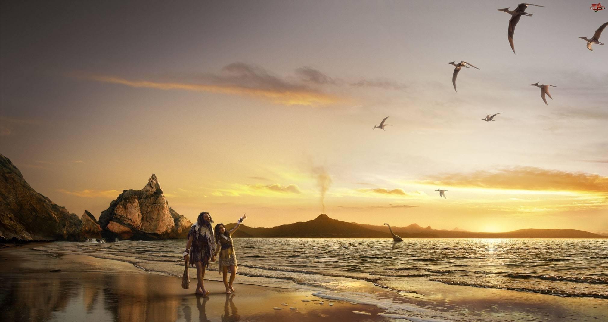 Ludzie, Ptaki, Plaża, Morze, Skały